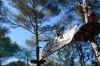 Parcours 6 Nature